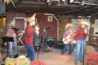 Scarecrow Band